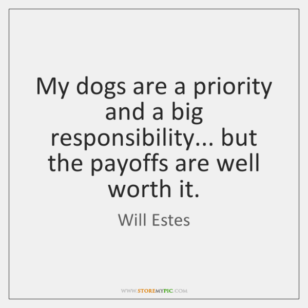 My dogs are a priority and a big responsibility... but the payoffs ...