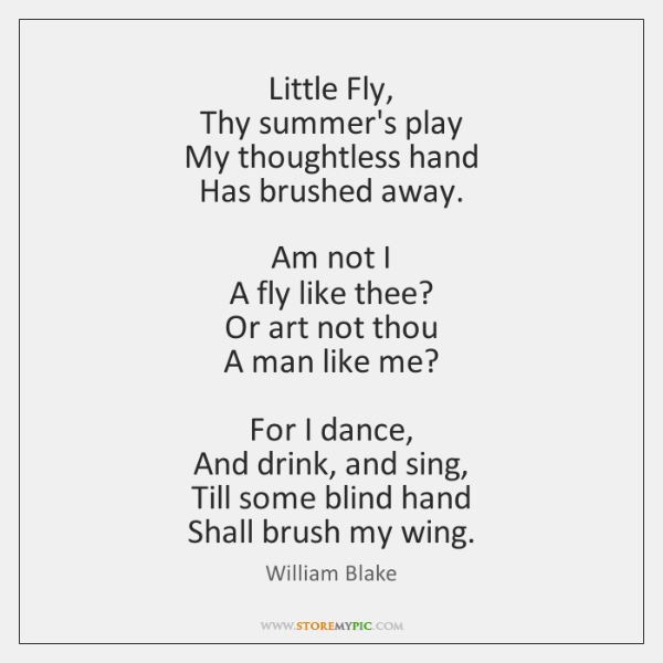 Little Fly,   Thy summer's play   My thoughtless hand   Has brushed away.     Am ...