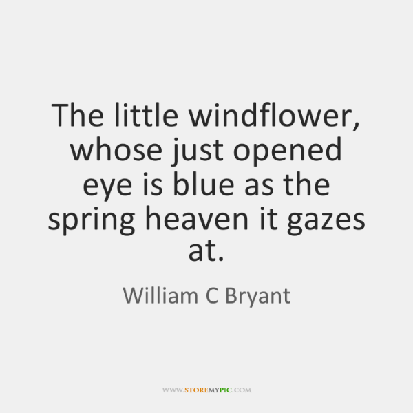 The little windflower, whose just opened eye is blue as the spring ...