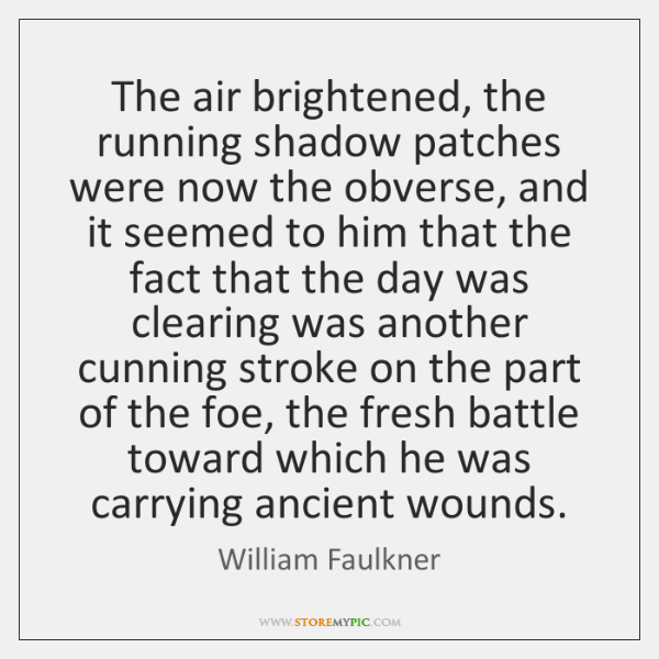 The air brightened, the running shadow patches were now the obverse, and ...
