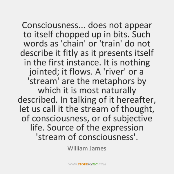 Consciousness... does not appear to itself chopped up in bits. Such words ...