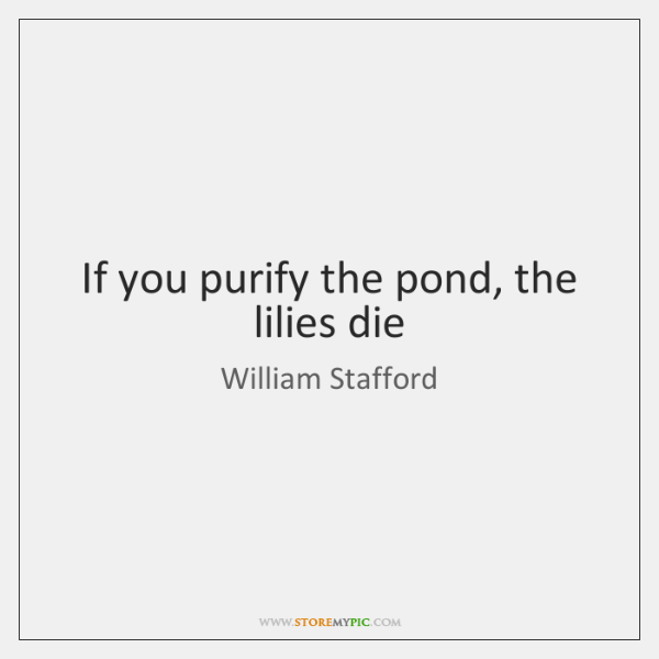 If you purify the pond, the lilies die