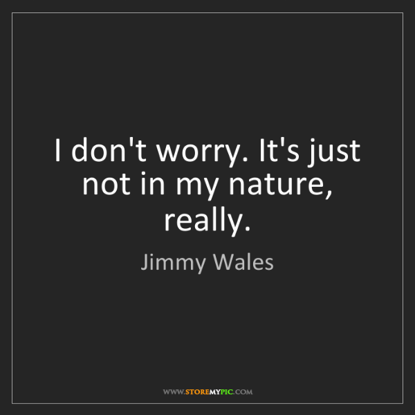 Jimmy Wales: I don't worry. It's just not in my nature, really.