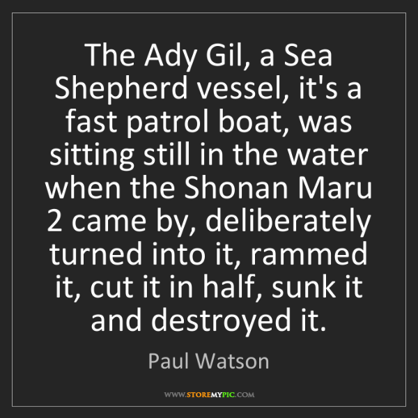 Paul Watson: The Ady Gil, a Sea Shepherd vessel, it's a fast patrol...
