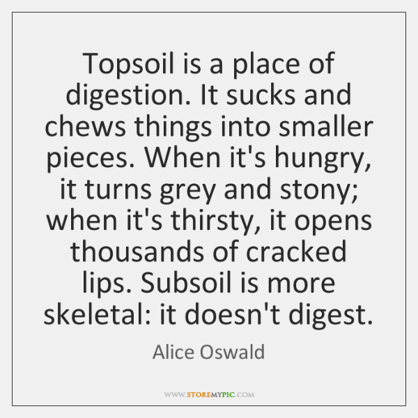 Topsoil is a place of digestion. It sucks and chews things into ...