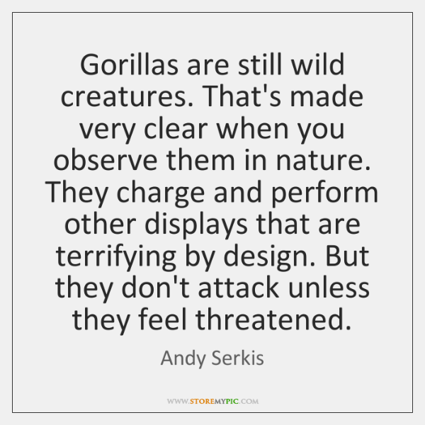 Gorillas are still wild creatures. That's made very clear when you observe ...