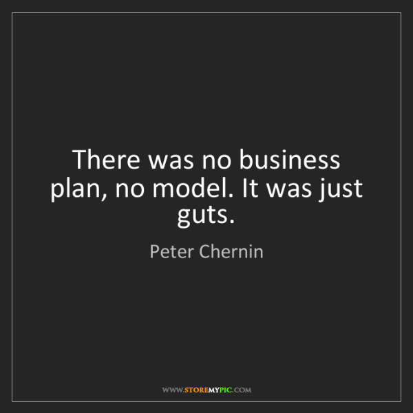 Peter Chernin: There was no business plan, no model. It was just guts.