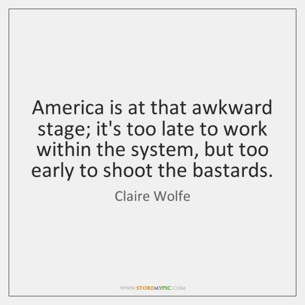 America is at that awkward stage; it's too late to work within ...