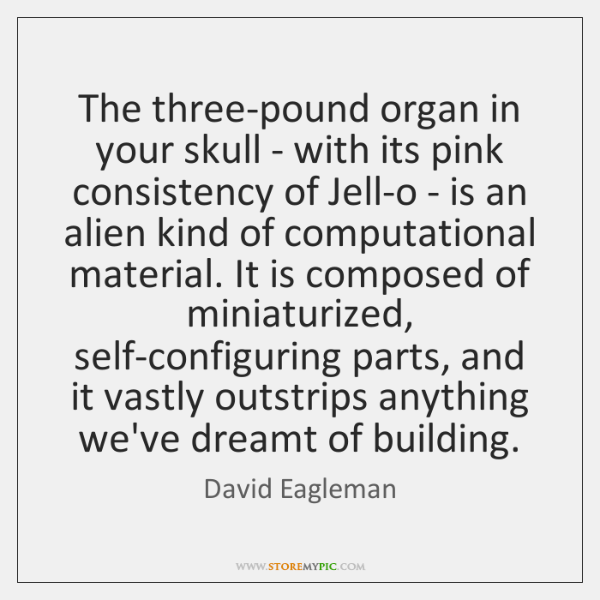 The three-pound organ in your skull - with its pink consistency of ...
