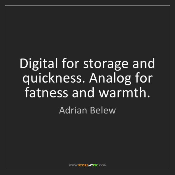 Adrian Belew: Digital for storage and quickness. Analog for fatness...