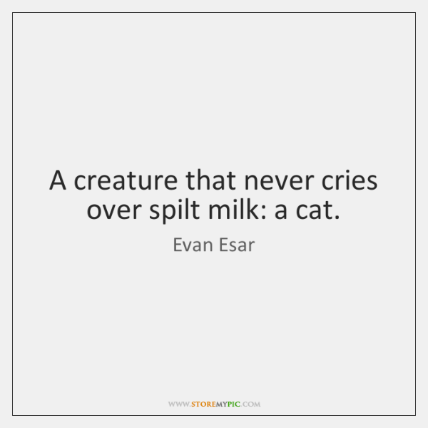 A creature that never cries over spilt milk: a cat.