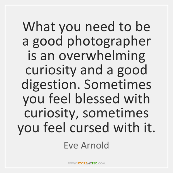 What you need to be a good photographer is an overwhelming curiosity ...