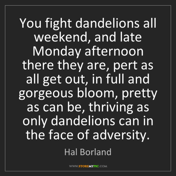 Hal Borland: You fight dandelions all weekend, and late Monday afternoon...
