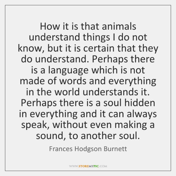 How it is that animals understand things I do not know, but ...