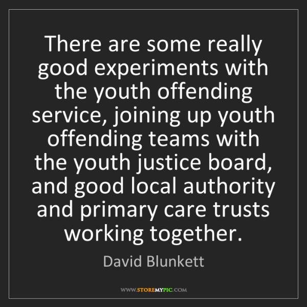 David Blunkett: There are some really good experiments with the youth...