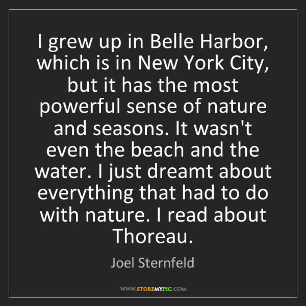 Joel Sternfeld: I grew up in Belle Harbor, which is in New York City,...