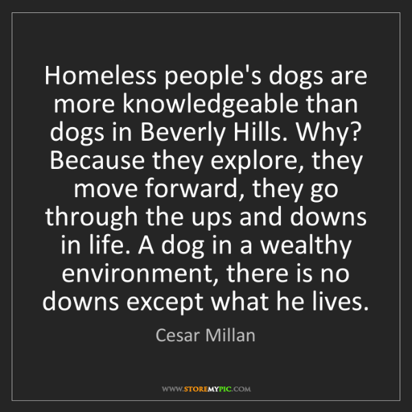 Cesar Millan: Homeless people's dogs are more knowledgeable than dogs...