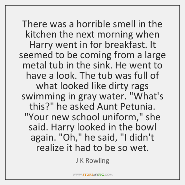 There was a horrible smell in the kitchen the next morning when ...