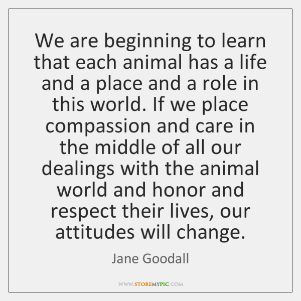 We are beginning to learn that each animal has a life and ...
