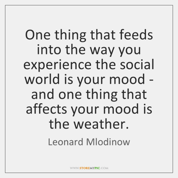 One thing that feeds into the way you experience the social world ...