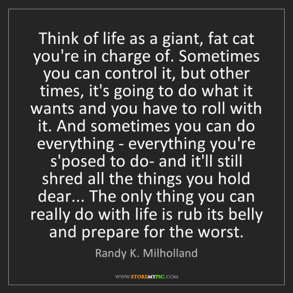 Randy K. Milholland: Think of life as a giant, fat cat you're in charge of....