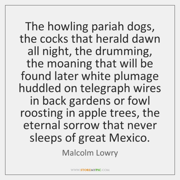 The howling pariah dogs, the cocks that herald dawn all night, the ...