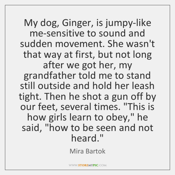 My dog, Ginger, is jumpy-like me-sensitive to sound and sudden movement. She ...