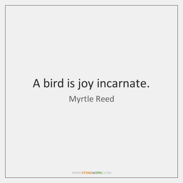 A bird is joy incarnate.