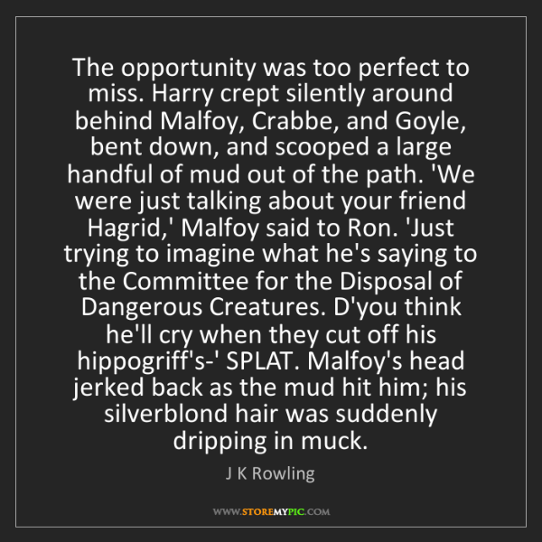 J K Rowling: The opportunity was too perfect to miss. Harry crept...
