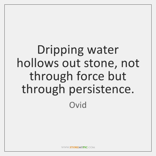 Dripping water hollows out stone, not through force but through persistence.