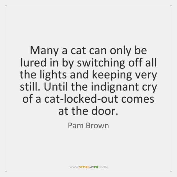 Many a cat can only be lured in by switching off all ...