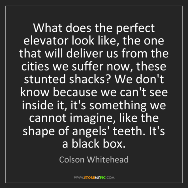 Colson Whitehead: What does the perfect elevator look like, the one that...