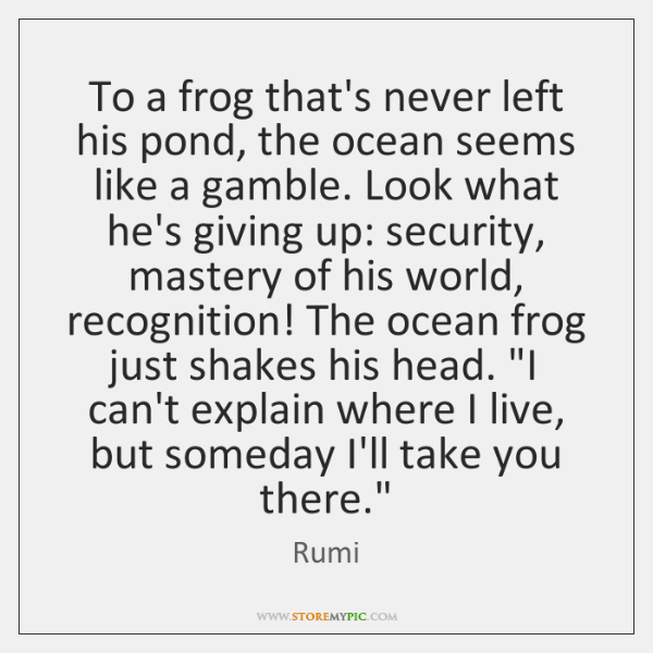 To a frog that's never left his pond, the ocean seems like ...