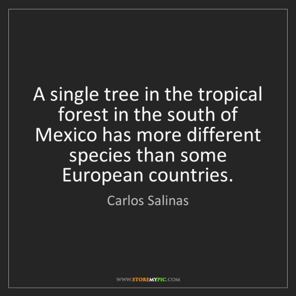Carlos Salinas: A single tree in the tropical forest in the south of...