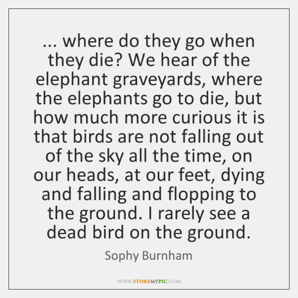 ... where do they go when they die? We hear of the elephant ...
