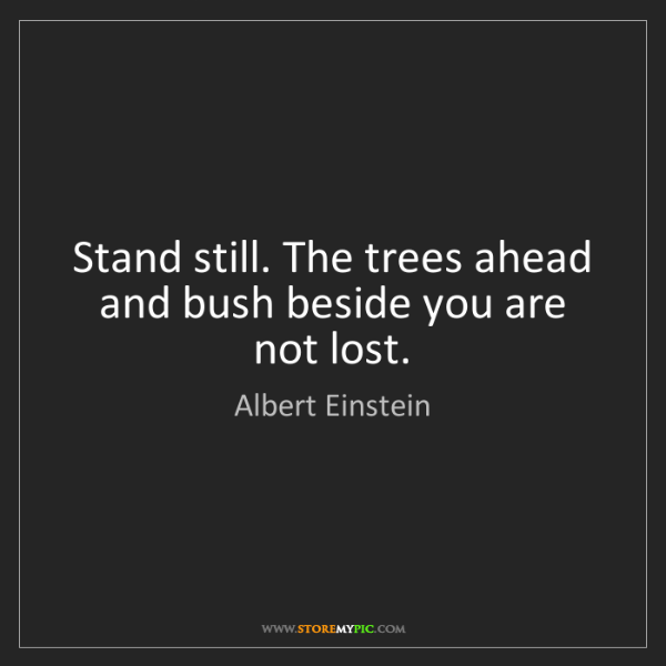 Albert Einstein: Stand still. The trees ahead and bush beside you are...