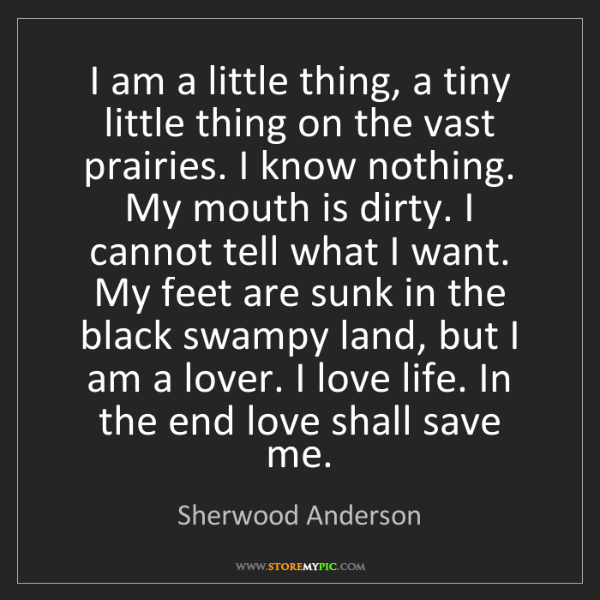 Sherwood Anderson: I am a little thing, a tiny little thing on the vast...