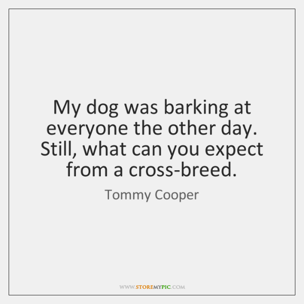 My dog was barking at everyone the other day. Still, what can ...