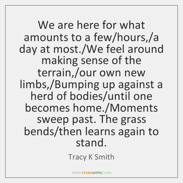 We are here for what amounts to a few/hours,/a day ...