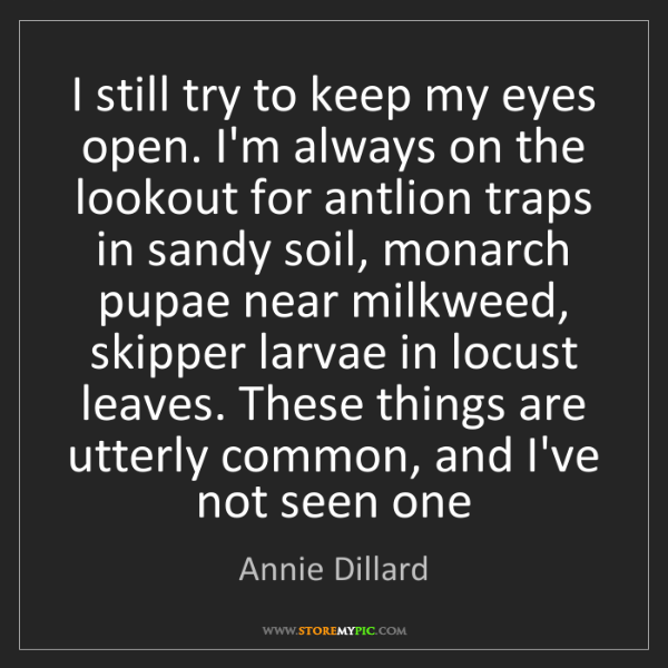 Annie Dillard: I still try to keep my eyes open. I'm always on the lookout...