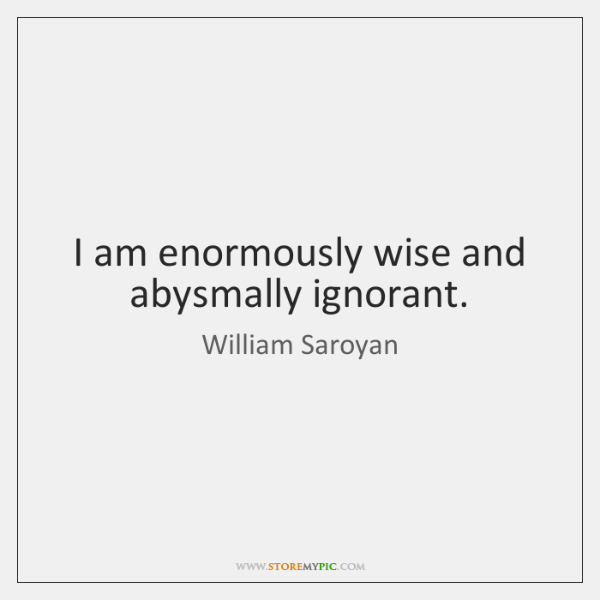 I am enormously wise and abysmally ignorant.
