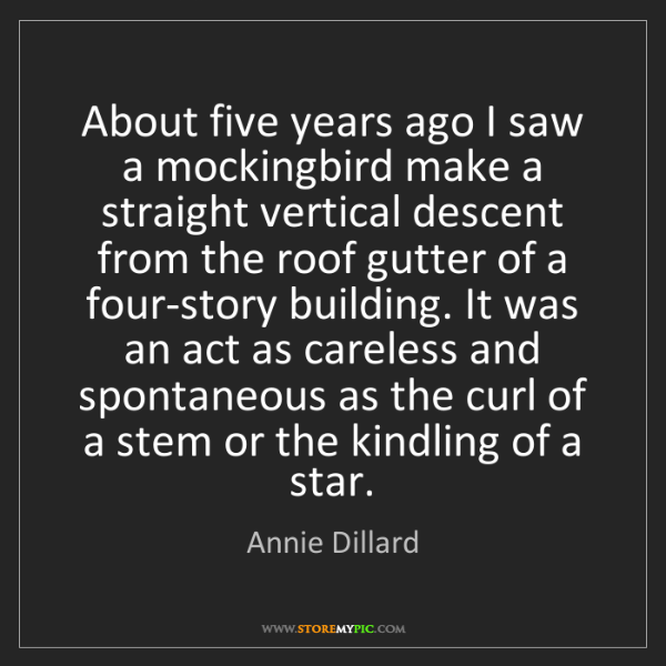 Annie Dillard: About five years ago I saw a mockingbird make a straight...
