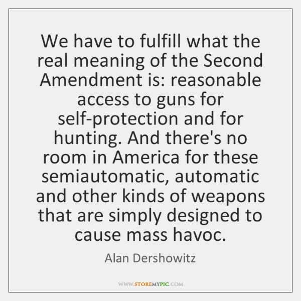 We have to fulfill what the real meaning of the Second Amendment ...