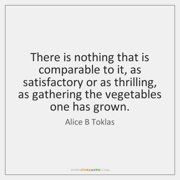 There is nothing that is comparable to it, as satisfactory or as ...