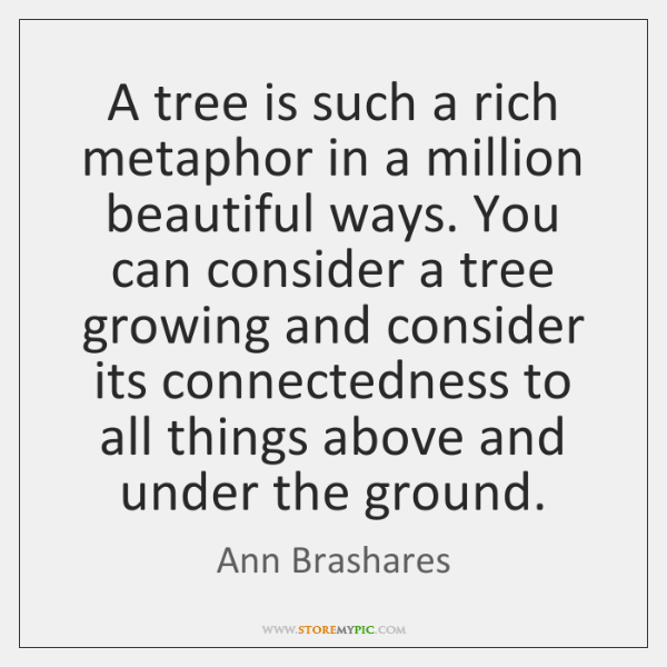 A tree is such a rich metaphor in a million beautiful ways. ...