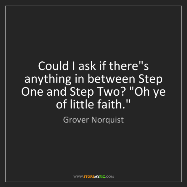 Grover Norquist: Could I ask if there's anything in between Step One and...