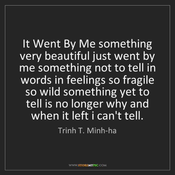 Trinh T. Minh-ha: It Went By Me something very beautiful just went by me...