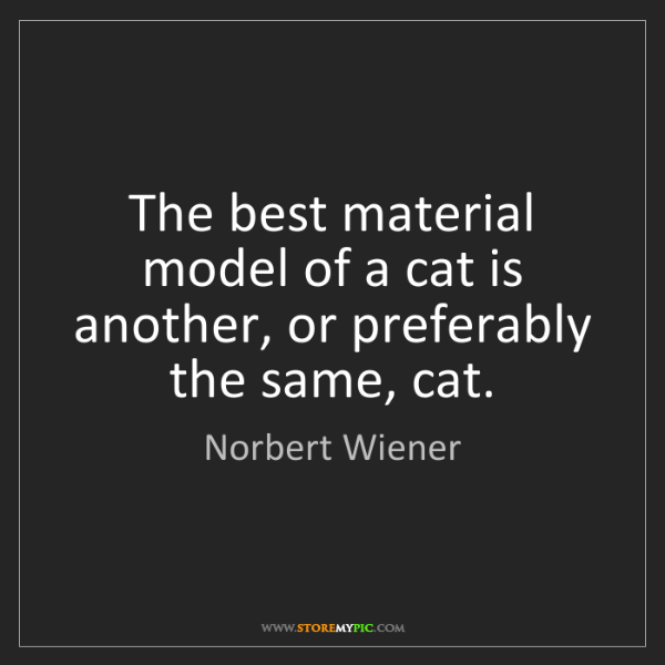 Norbert Wiener: The best material model of a cat is another, or preferably...