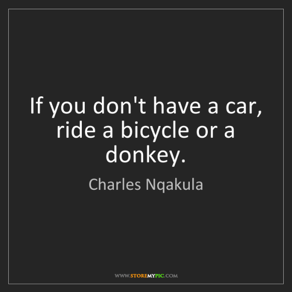 Charles Nqakula: If you don't have a car, ride a bicycle or a donkey.