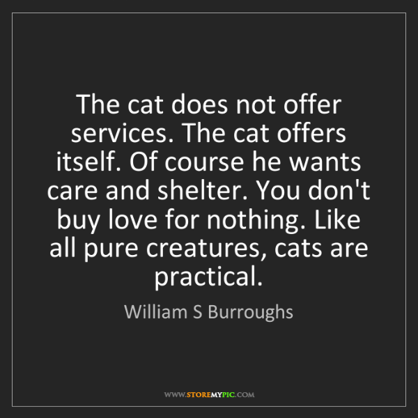 William S Burroughs: The cat does not offer services. The cat offers itself....